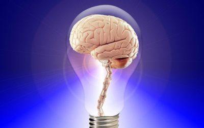 Frédéric Koessler: « Selective Memory of a Psychological Agent » (PSE WP)